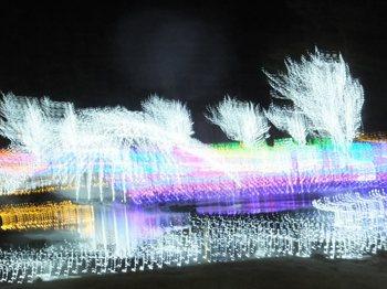 あずみの公園イルミ(1200)102.jpg