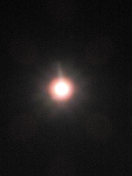 月(1200)003.jpg
