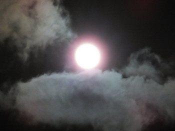 月(800)060.jpg